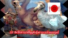 10 อันดับสัตว์ดึกดำบรรพ์ที่สูญพันธุ์เพราะการล่าของมนุษย์